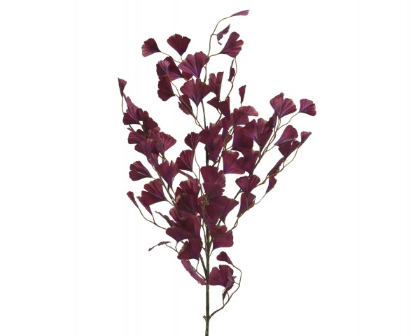 Ginkostrauss violett